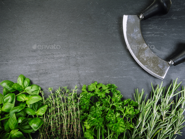 Herbs and cutter on slate background - Stock Photo - Images