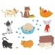 Flat Vector Set with Cats Cartoon - GraphicRiver Item for Sale