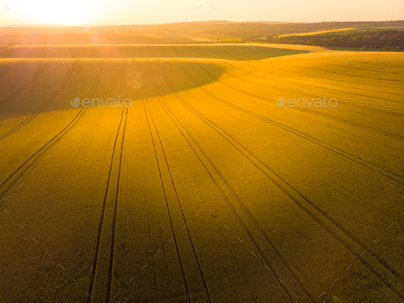Sunrise oover rolling hills in Moravia, aerial drone view - Stock Photo - Images