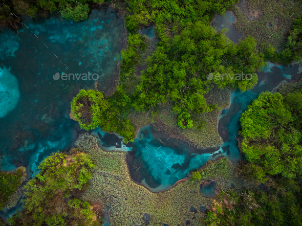 Blue water in lake and vibrant green colors of Zelenci,Slovenia - Stock Photo - Images
