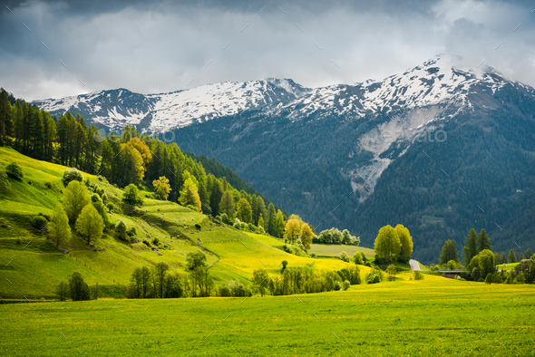 Breathtaking view over summer colors in alpine Switzerland - Stock Photo - Images