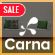 Carna - Clean Furniture Responsive WooCommerce WordPress Theme