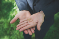 Two golden wedding rings on groom's palms. Wedding rings on the - PhotoDune Item for Sale