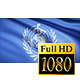 World Health Organization Flag - VideoHive Item for Sale