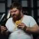 Fat Bearded Man Types Something in His Smartphone Eating a Burger on the Couch - VideoHive Item for Sale