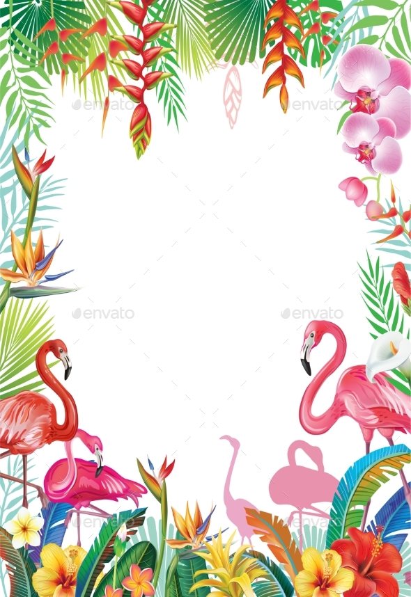 Frame From Tropical Flowers and Flamingos - Flowers & Plants Nature