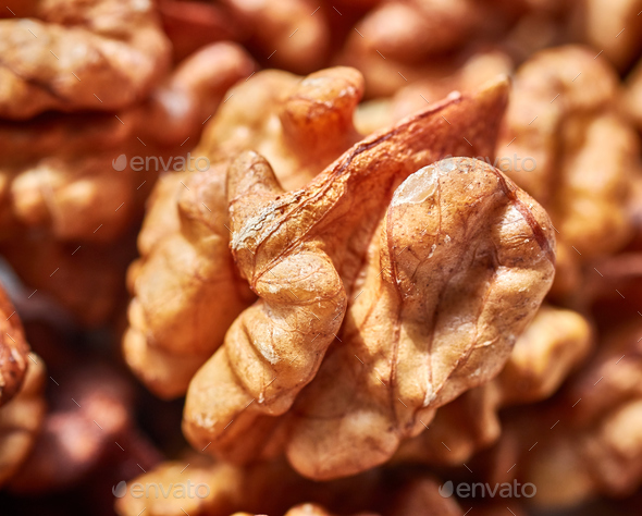 Close up picture of dried walnuts. - Stock Photo - Images