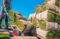 Landscaper Grass Instalation - PhotoDune Item for Sale