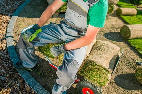 Gardener and Nature Grass Turfs - Stock Photo - Images