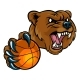 Bear Holding Basketball