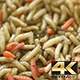 White and Red Worms Crawling - VideoHive Item for Sale