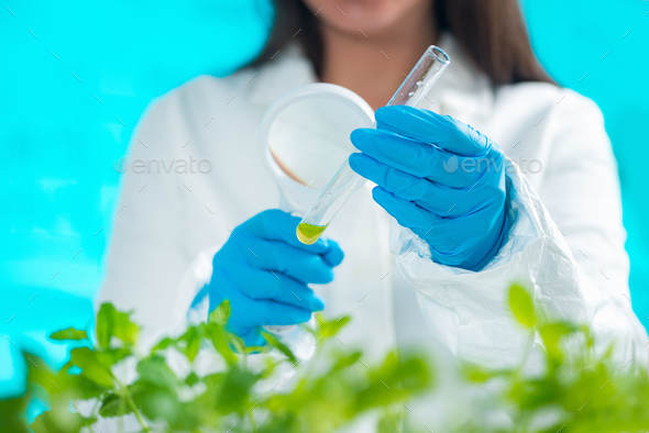 Biologist Examining Samples - Stock Photo - Images