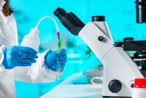 Biologist working with seedlings in plant laboratory - Stock Photo - Images