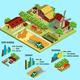 Isometric Farm Infographic Concept