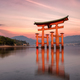 Miyajima Tori Gate at Sunset - PhotoDune Item for Sale