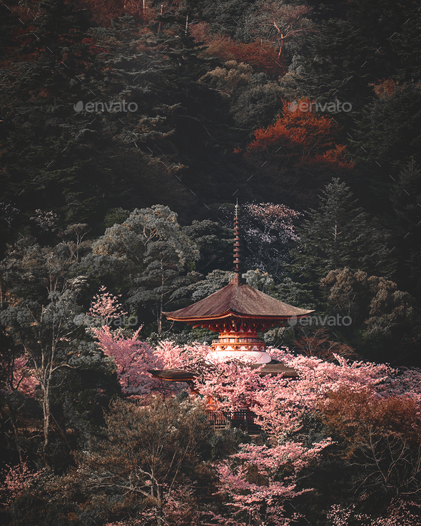Pagoda above the trees - Stock Photo - Images