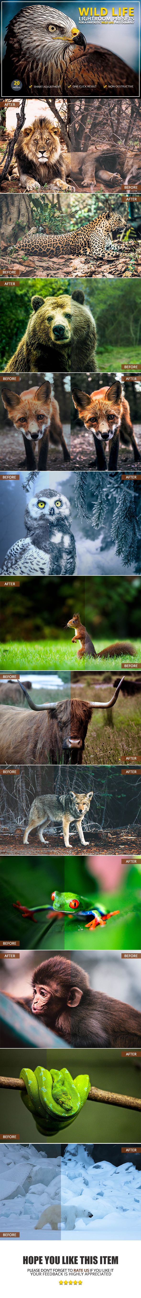 20 Wild Life Lightroom Presets - Lightroom Presets Add-ons
