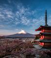 Chureito Pagoda - PhotoDune Item for Sale