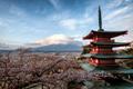 Chureito Pagoda overlooking Mt Fuji  - PhotoDune Item for Sale
