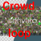 Stadium Crowd Loop - VideoHive Item for Sale