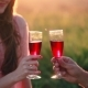 Couple Is Toasting with Wine Glasses During a Beautiful Summertime Sunset in Soft Sunlight - VideoHive Item for Sale
