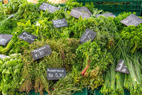 Different kinds of fresh herbs - Stock Photo - Images