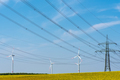 Power transmission lines in a field of flowering oilseed rape - PhotoDune Item for Sale