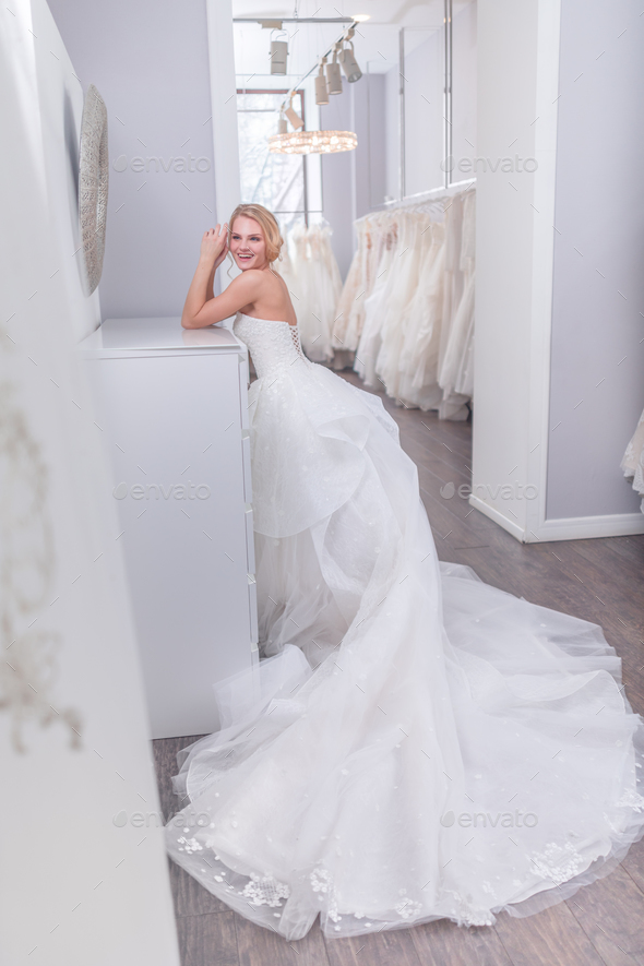 Beautiful bride in wedding dress - Stock Photo - Images
