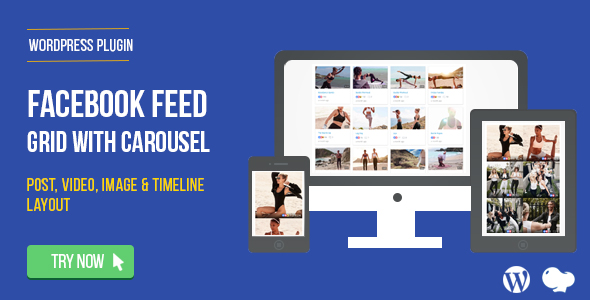 Facebook Feed : Post, Photo,Video and Timeline for WordPress            Nulled
