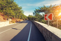 Asphalt road with road sign in the forest at sunrise - PhotoDune Item for Sale