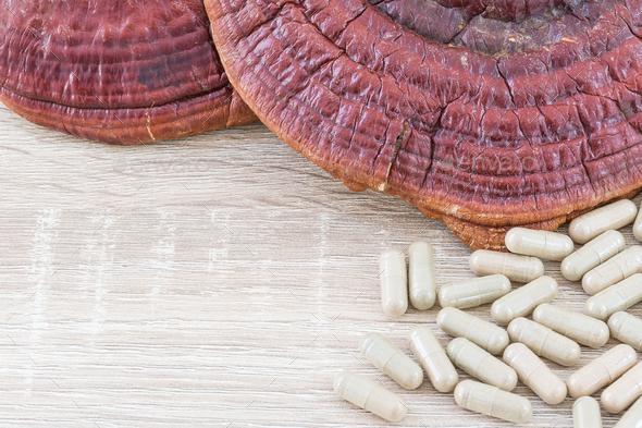 Ling zhi mushroom or Ganoderma lucidum capsule_-4 - Stock Photo - Images