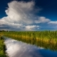 River in Spring on a Bright Sunny Day. Blue Sky with White Clouds - VideoHive Item for Sale