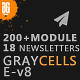 Graycells - 200+ Modules + 18 Templates With StampReady Builder Access