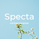 Specta Minimal Powerpoint Template - GraphicRiver Item for Sale