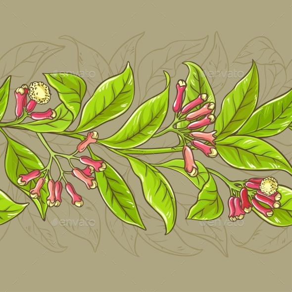 Clove Vector Pattern - Health/Medicine Conceptual