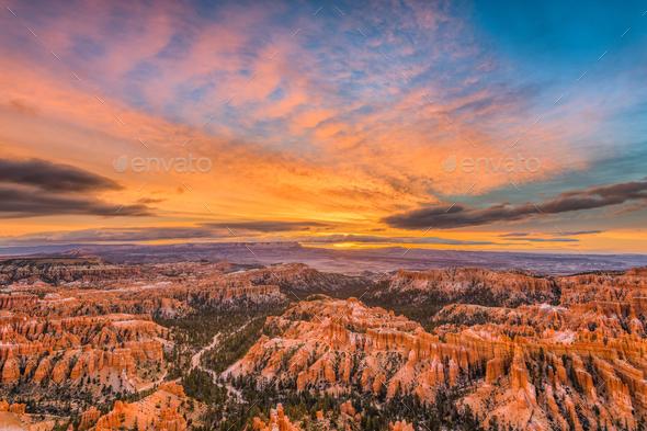 Bryce Canyon at Dawn - Stock Photo - Images