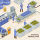 Olive Oil Production Isometric