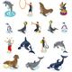 Sea Circus Isometric Icons