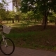 Happy Girl Cycling on Bicycle Sunlight - VideoHive Item for Sale