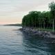 Jutland Coastal Forest - VideoHive Item for Sale