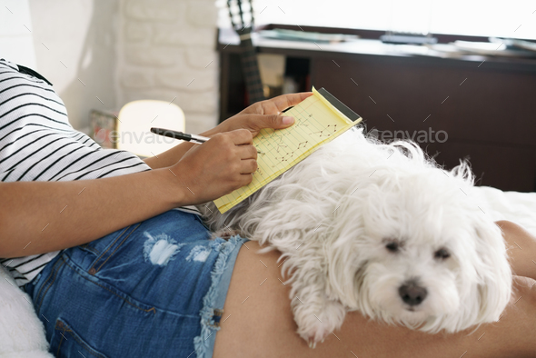 Girl Studying For School Homework With Dog On Legs - Stock Photo - Images