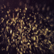Gold Glitter Flares Particles - VideoHive Item for Sale