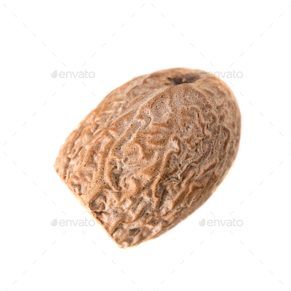 Close-up of Nutmeg. - Stock Photo - Images