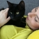 Beautiful Dark-haired Girl with a Black Cat Is Relaxing at Home - VideoHive Item for Sale