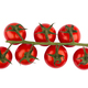 cherry tomatoes on green branch - PhotoDune Item for Sale