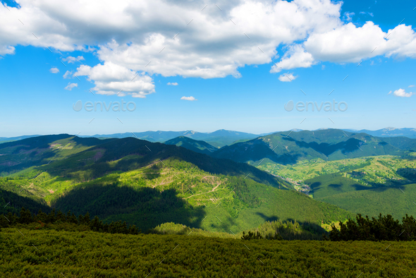 Mountains in summer sunny day - Stock Photo - Images