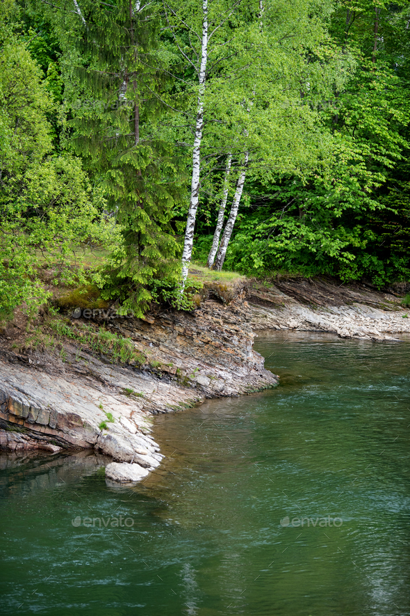 Mountain forest river landscape - Stock Photo - Images