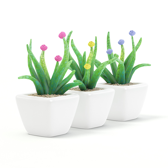 Plastic Flowers 3D Model - 3DOcean Item for Sale