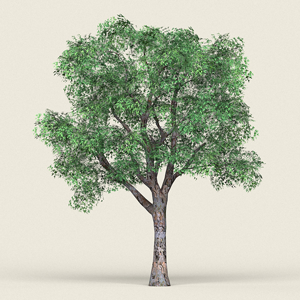 Game Ready Forest Tree 04 - 3DOcean Item for Sale
