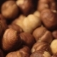 Hazelnut - VideoHive Item for Sale